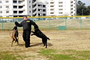 Hundeangriff abwehren - Pfefferspray
