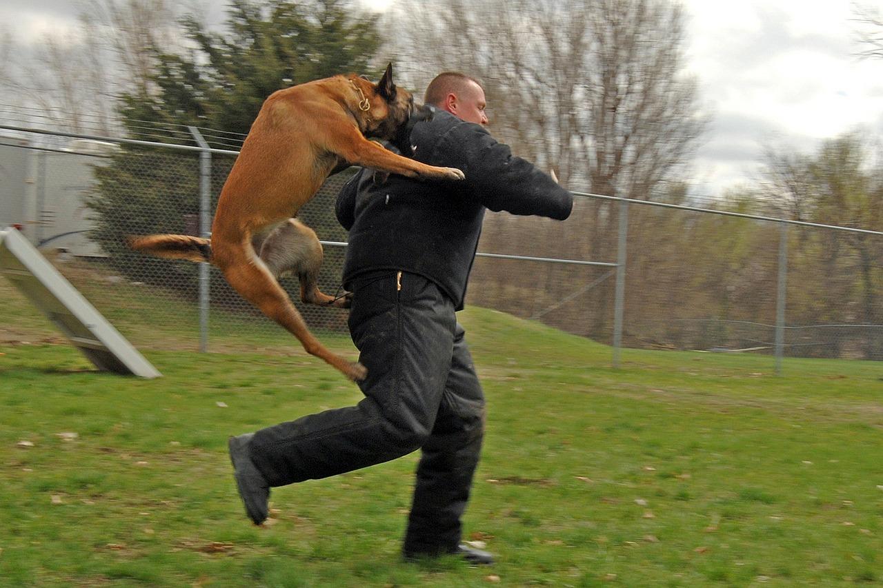 Tierabwehrspray - Kampfhunde abwehren