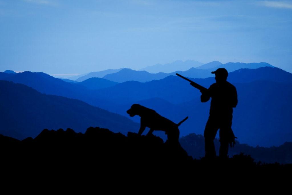 Nachtsichtgeräte bei der Jagd